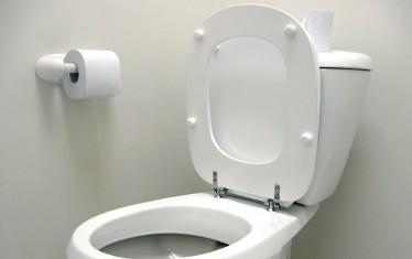 toilet seat-C101-land